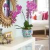 Orhideju kopšana mājas apstākļos – 2.daļa