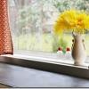 Virtuves loga noformēšana