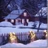 Vēl dažas idejas dārza dekorēšanai ziemā