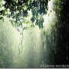 Dāvana no debesīm – lietus ūdens
