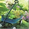 Noderīgi padomi kā paplašināt mazu dārzu
