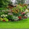 Dārza plānošanas online programma