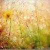 5 šķēršļi, kas kavē mums veidot brīnišķīgu dzīvi