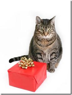 kakis dāvana