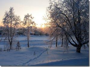 ziemas skats