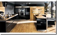 virtuves modernakais dizains 2010-2011