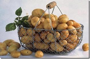 jaunie kartupeļi