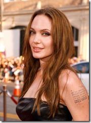 Angelina Jolie frizūras 2009 (3)
