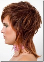 kaskades matu griezums 2012 (4)