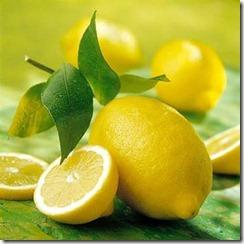 citroni (4)