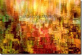 Antumn Palette, #1