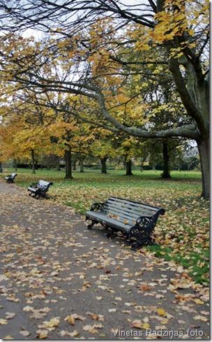 londona_novembri (3)
