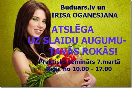Irisas_seminars