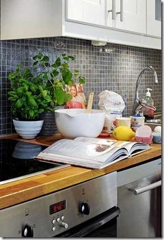virtuves_interjers