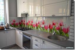 virtuves_prieksauts (2)