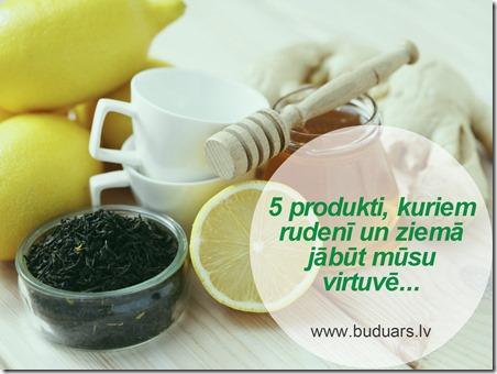 5_produkti_aizsardzibai_pret_gripu