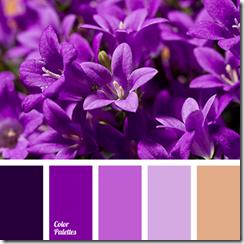 violetas_krasas_kombinacijas_ar_citam_krasam (5)