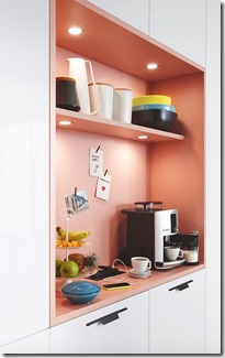 1514574545-pink-kitchen-cabinet-shelf